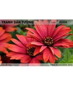 Flower wallpaper FL050