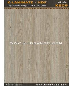 Upstairs Floorboards LG-K809
