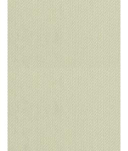 CHAMPAGNE wallpaper 2671