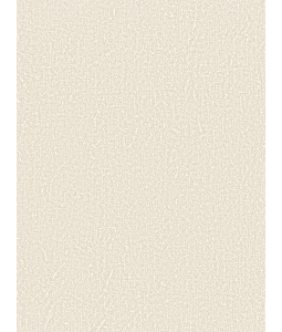 Giấy Dán Tường CLOUD 5917-4