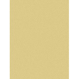 Giấy dán tường COLORS 5547-10