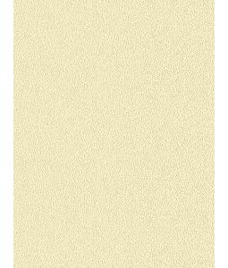 COLORS wallpaper 5547-8