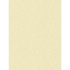 Giấy dán tường COLORS 5547-8
