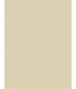 COLORS wallpaper 5547-9