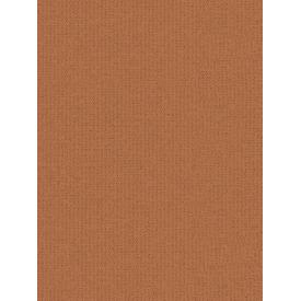 Giấy dán tường COLORS 5549-10