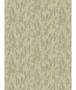 DIO wallpaper 14032