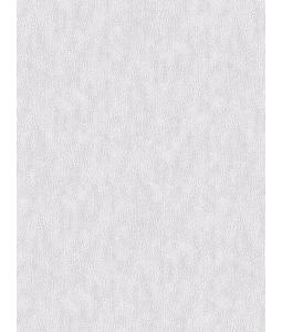 DIO wallpaper 14036