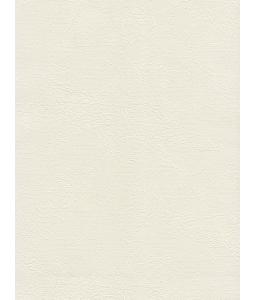 DIO wallpaper 14161