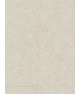 DIO wallpaper 14162