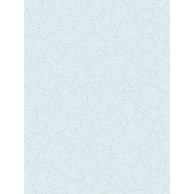 Giấy dán tường FLORIA 7705-4