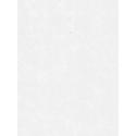 Giấy dán tường HOME M80001