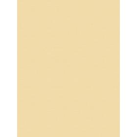 Giấy Dán Tường MORDERN 25048-5