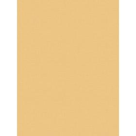 Giấy Dán Tường MORDERN 25048-6
