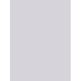 Giấy Dán Tường MORDERN 25050-4