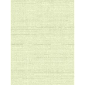 Giấy Dán Tường NEW LUCK II 8003-7