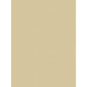 Giấy dán tường V-CONCEPT 7902-5