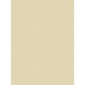 Giấy dán tường V-CONCEPT 7904-3