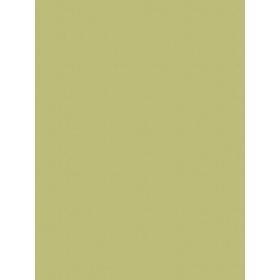 Giấy dán tường V-CONCEPT 7915-10
