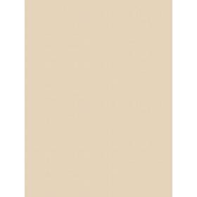 Giấy dán tường V-CONCEPT 7915-6
