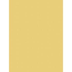 Giấy dán tường V-CONCEPT 7915-8