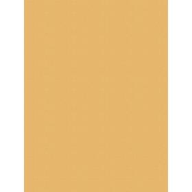Giấy dán tường V-CONCEPT 7915-9