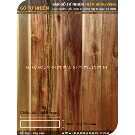 Sàn gỗ tràm bông vàng 600mm