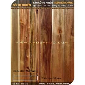 Sàn gỗ tràm bông vàng 750mm