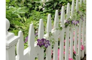 Làm đẹp không gian ngoài trời với hàng rào gỗ
